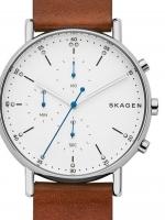 Ceas: Ceas de dama Skagen SKW6462 Signatur Chrono. 40mm 5ATM