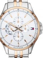 Ceas: Ceas barbatesc Tommy Hilfiger 1791617 Shawn  44mm 5ATM